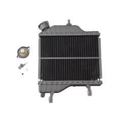 Radiateur d'eau origine Yamaha TZR - XPower 50cc
