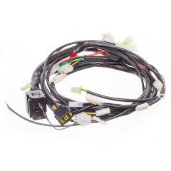 Faisceau électrique principal Rieju RS3 50cc